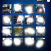 Fotos vom iPhone oder iPad in der Dropbox sichern